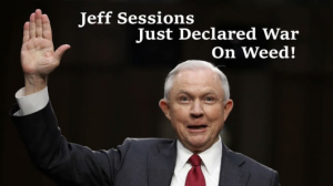 Leaders in Cannabis Industry Call for Attorney General Jeff Sessions' Immediate Resignation and Removal from Office