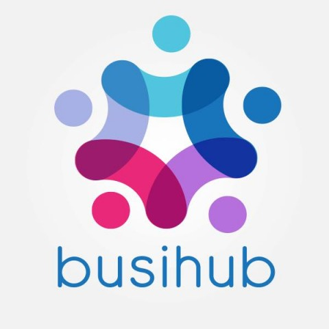 Busihub networking app