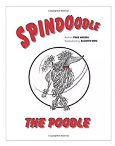 Spindoodle new fiction book